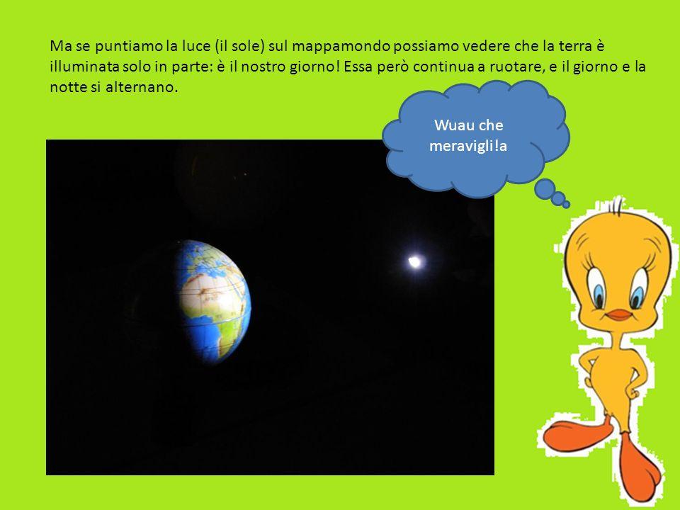 Ma se puntiamo la luce (il sole) sul mappamondo possiamo vedere che la terra è illuminata solo in parte: è il nostro giorno! Essa però continua a ruot