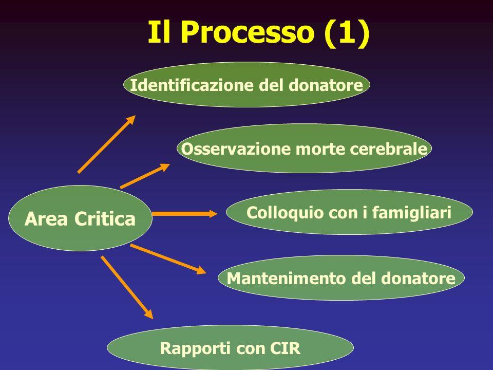 Il Processo (1) Identificazione del donatore Osservazione morte cerebrale Colloquio con i famigliari Mantenimento del donatore Rapporti con CIR Area C