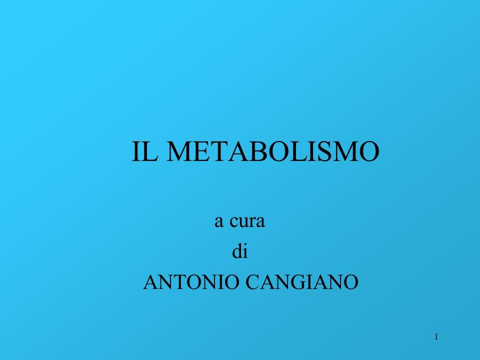 1 IL METABOLISMO a cura di ANTONIO CANGIANO