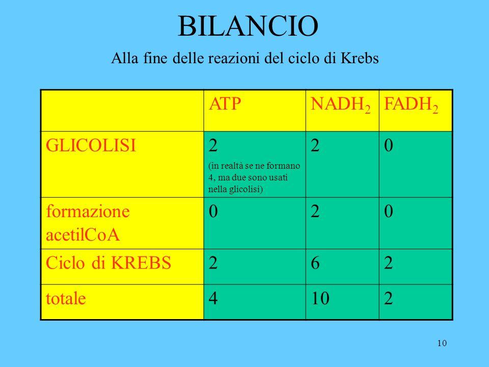 10 BILANCIO ATPNADH 2 FADH 2 GLICOLISI 2 (in realtà se ne formano 4, ma due sono usati nella glicolisi) 20 formazione acetilCoA 020 Ciclo di KREBS262 totale4102 Alla fine delle reazioni del ciclo di Krebs