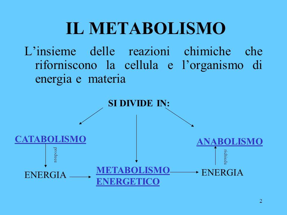 2 IL METABOLISMO Linsieme delle reazioni chimiche che riforniscono la cellula e lorganismo di energia e materia SI DIVIDE IN: CATABOLISMO ANABOLISMO METABOLISMO ENERGETICO ENERGIA produce richiede