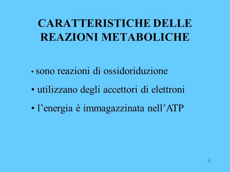 3 CARATTERISTICHE DELLE REAZIONI METABOLICHE sono reazioni di ossidoriduzione utilizzano degli accettori di elettroni lenergia è immagazzinata nellATP