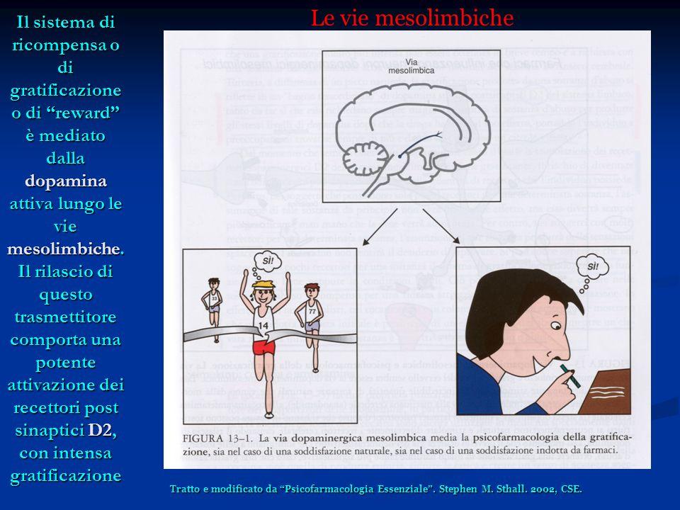 Le quattro vie dopaminergiche La Via Mesolimbica: dal mesencefalo al nucleo accumbens, correlata alla gratificazione, ai deliri ed allucinazioni (schizofrenia) La Via Mesocorticale: dal mesencefalo alla corteccia limbica, correlata alle attività cognitive in generale ed a quelle compromesse nella schizofrenia La Via Nigrostriatale: dalla substantia nigra ai gangli della base, correlata la controllo dellattività motoria (M.