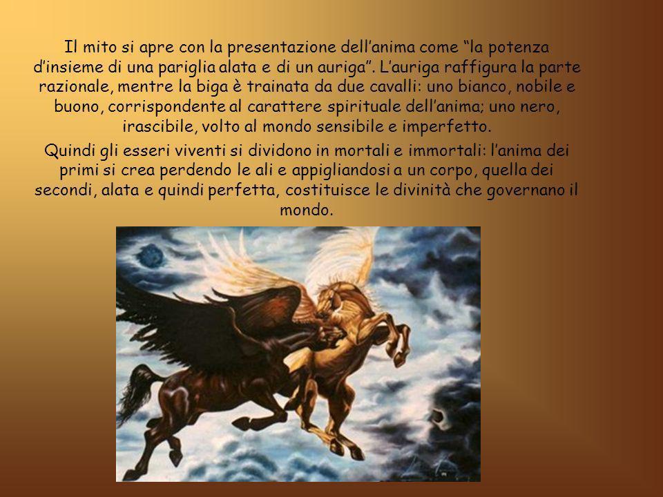 Il mito si apre con la presentazione dellanima come la potenza dinsieme di una pariglia alata e di un auriga.