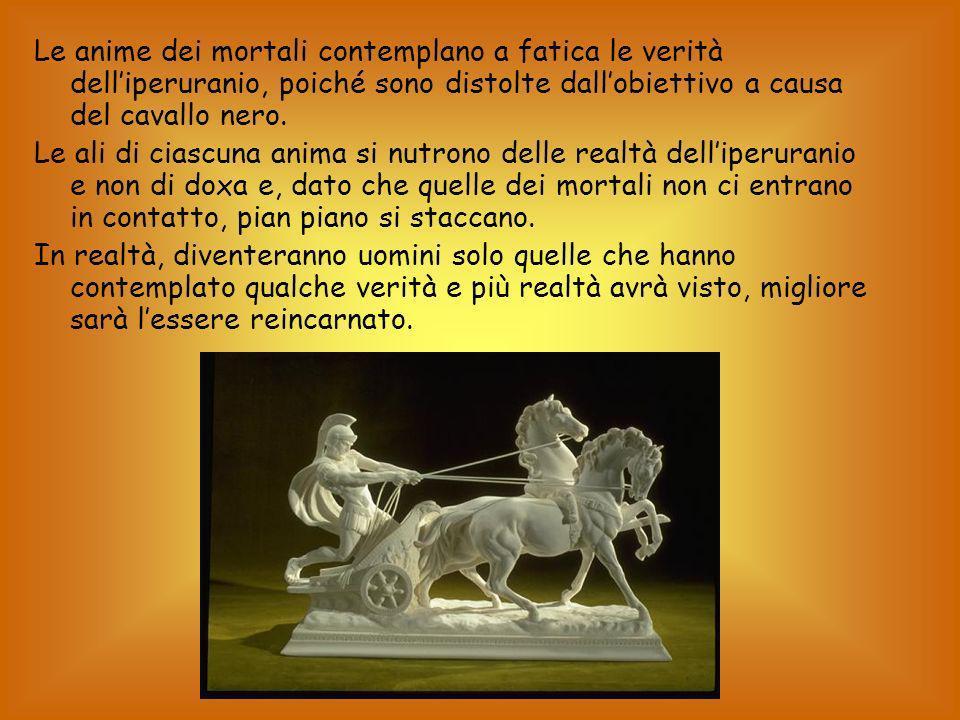 Le anime dei mortali contemplano a fatica le verità delliperuranio, poiché sono distolte dallobiettivo a causa del cavallo nero.