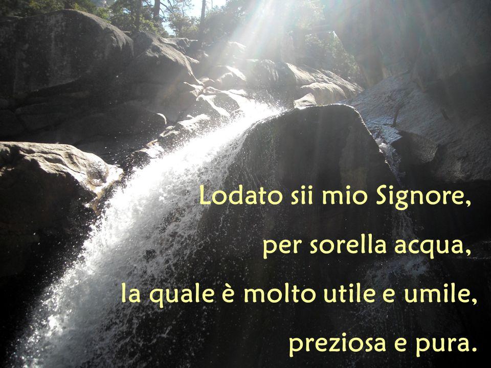 Lodato sii mio Signore, per sorella acqua, la quale è molto utile e umile, preziosa e pura.