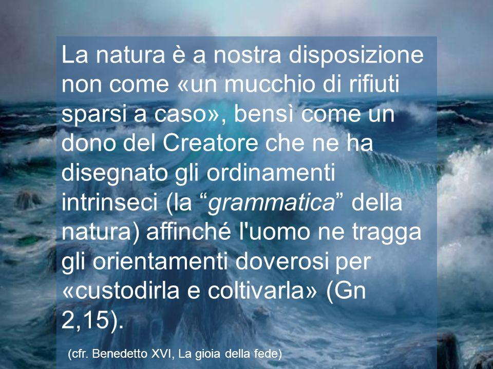 La natura è a nostra disposizione non come «un mucchio di rifiuti sparsi a caso», bensì come un dono del Creatore che ne ha disegnato gli ordinamenti