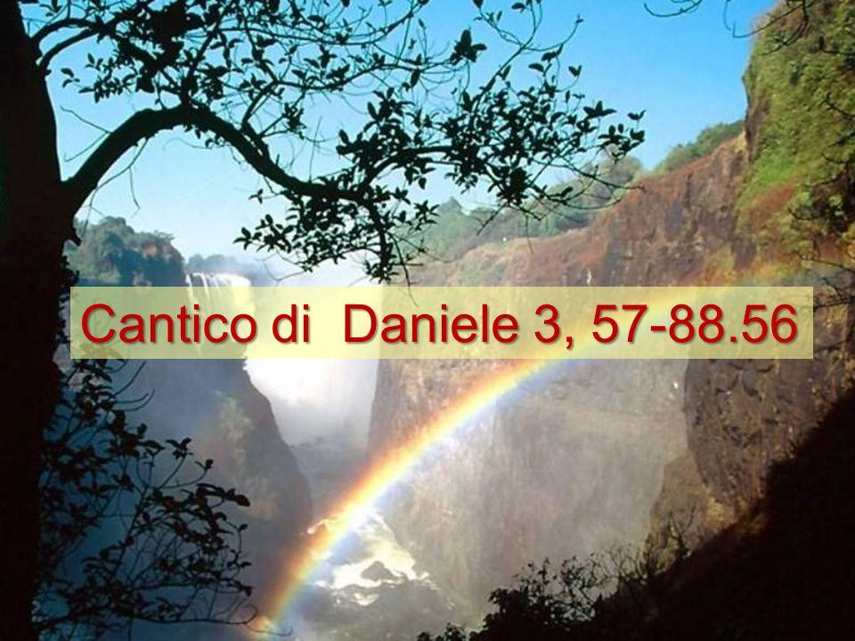 Cantico di Daniele 3, 57-88.56