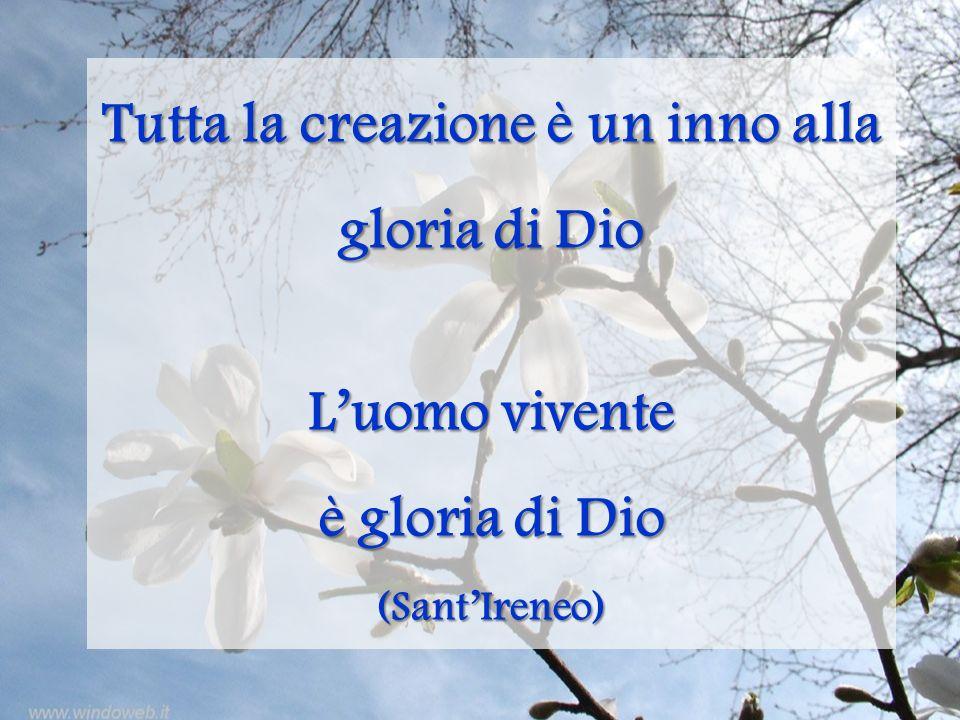 Tutta la creazione è un inno alla gloria di Dio Luomo vivente è gloria di Dio (SantIreneo)
