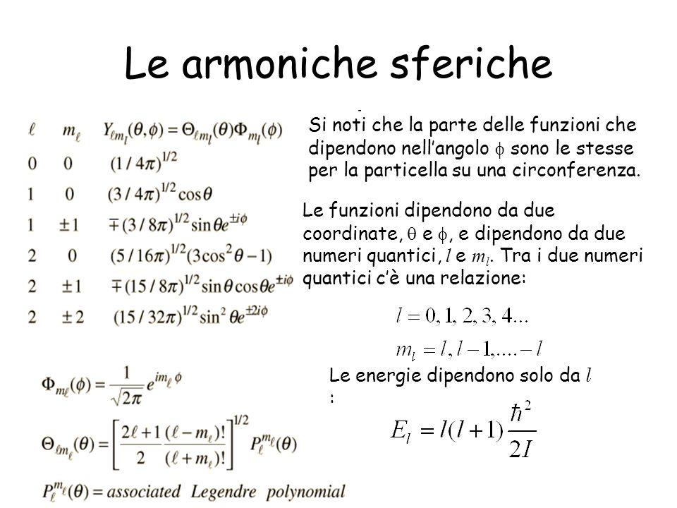 Le armoniche sferiche Si noti che la parte delle funzioni che dipendono nellangolo sono le stesse per la particella su una circonferenza. Le funzioni