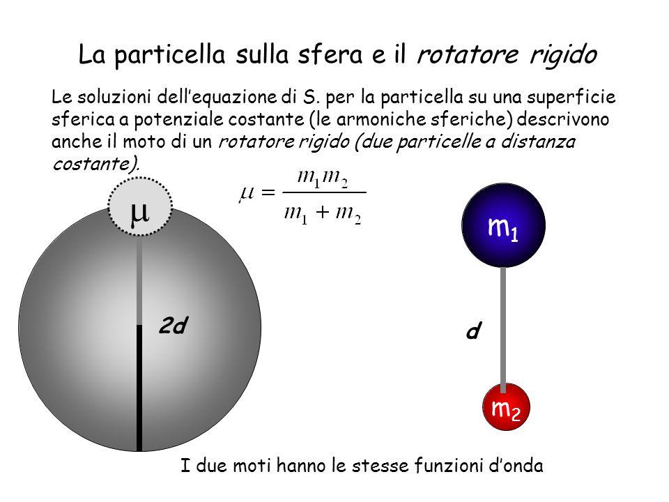 La particella sulla sfera e il rotatore rigido Le soluzioni dellequazione di S. per la particella su una superficie sferica a potenziale costante (le