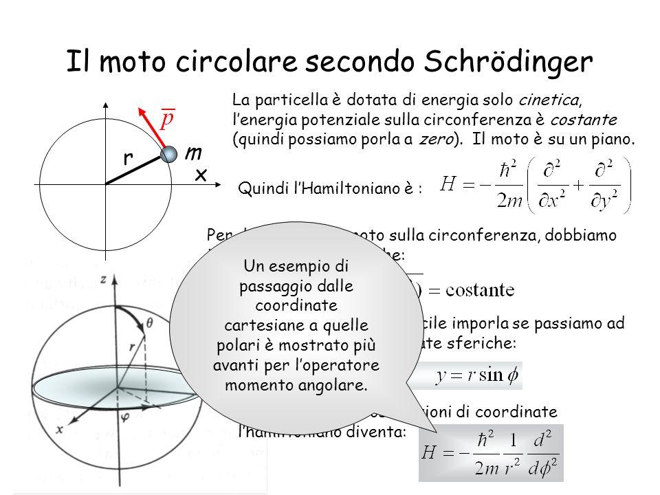 Il moto circolare secondo Schrödinger m r x La particella è dotata di energia solo cinetica, lenergia potenziale sulla circonferenza è costante (quind