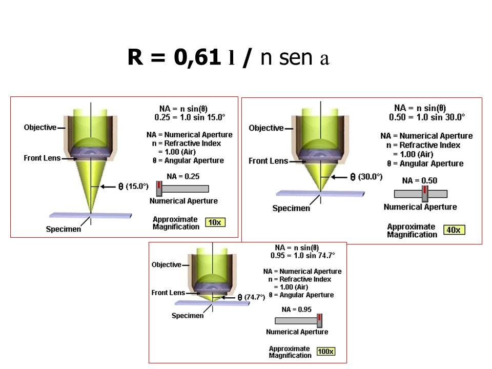R = 0,61 l / n sen a