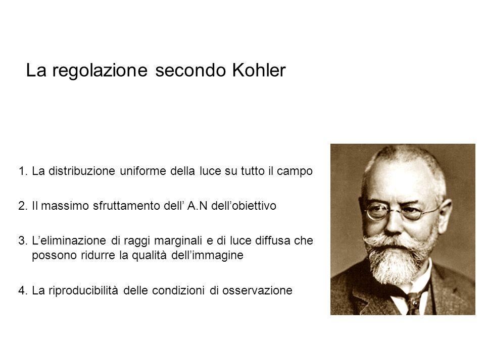 La regolazione secondo Kohler 4. La riproducibilità delle condizioni di osservazione 1. La distribuzione uniforme della luce su tutto il campo 2. Il m