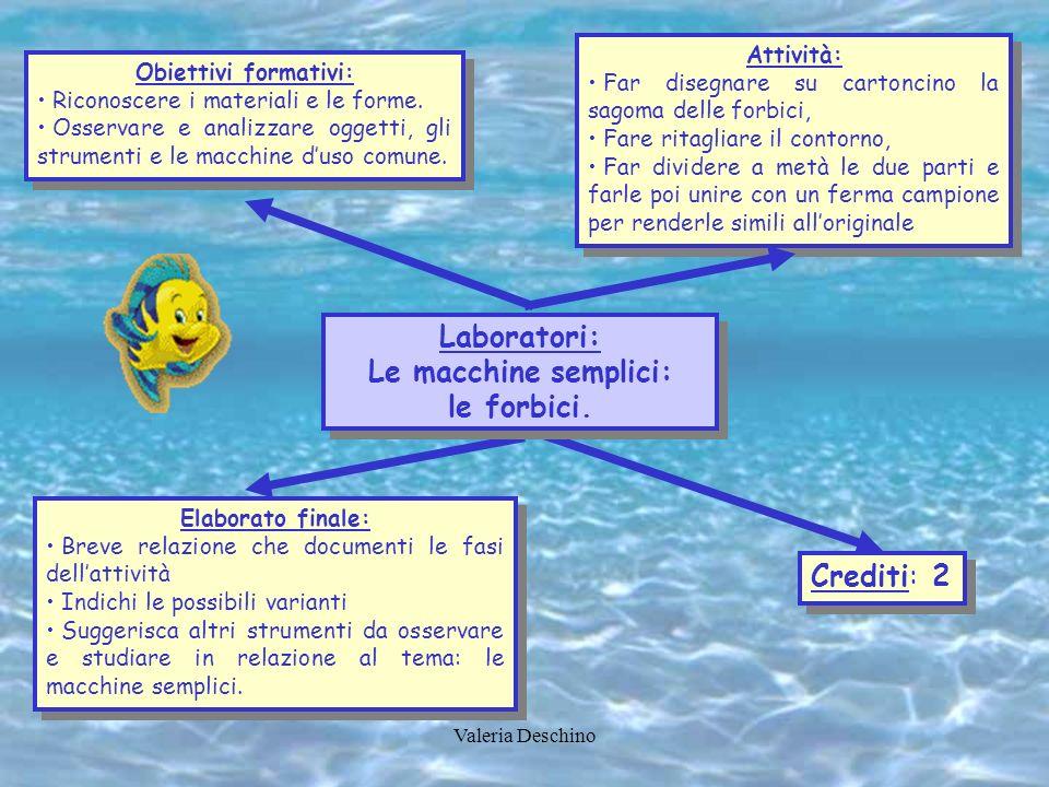 Obiettivi formativi: Riconoscere i materiali e le forme. Osservare e analizzare oggetti, gli strumenti e le macchine duso comune. Obiettivi formativi: