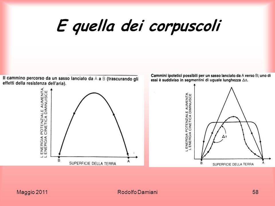 Maggio 2011Rodolfo Damiani58 E quella dei corpuscoli
