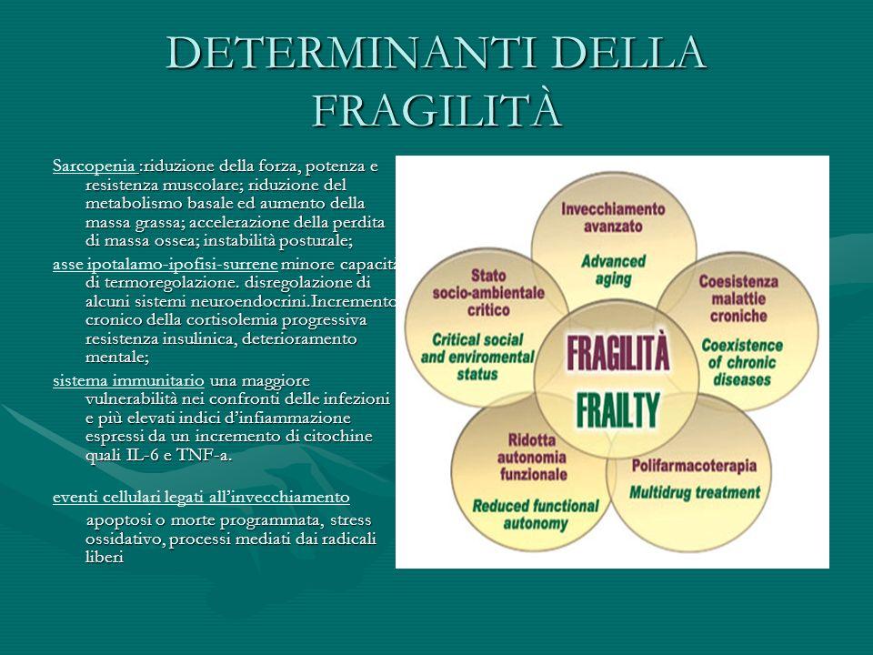 DETERMINANTI DELLA FRAGILITÀ :riduzione della forza, potenza e resistenza muscolare; riduzione del metabolismo basale ed aumento della massa grassa; a
