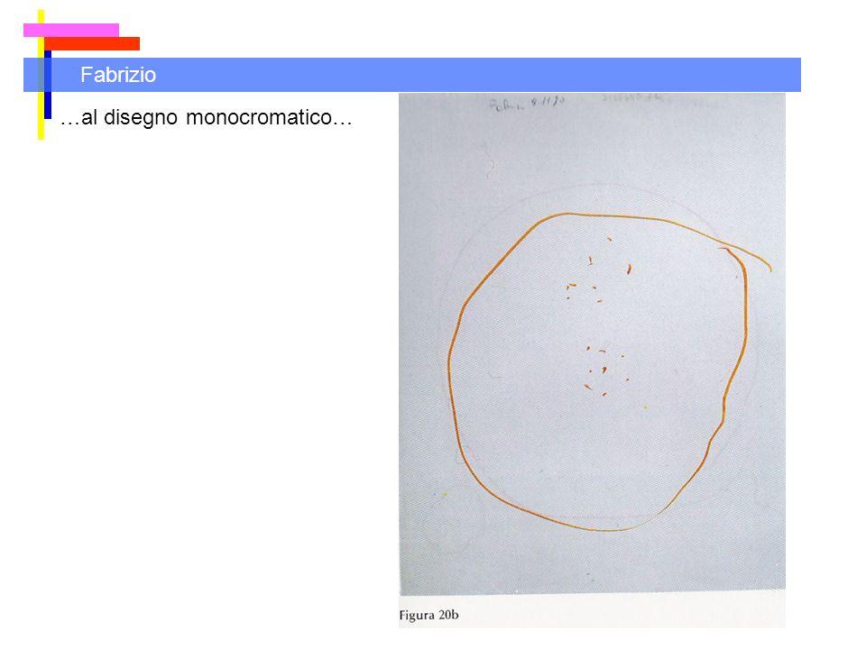 Fabrizio …al disegno monocromatico…