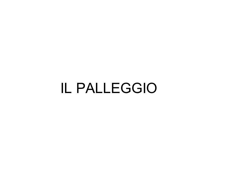 IL PALLEGGIO