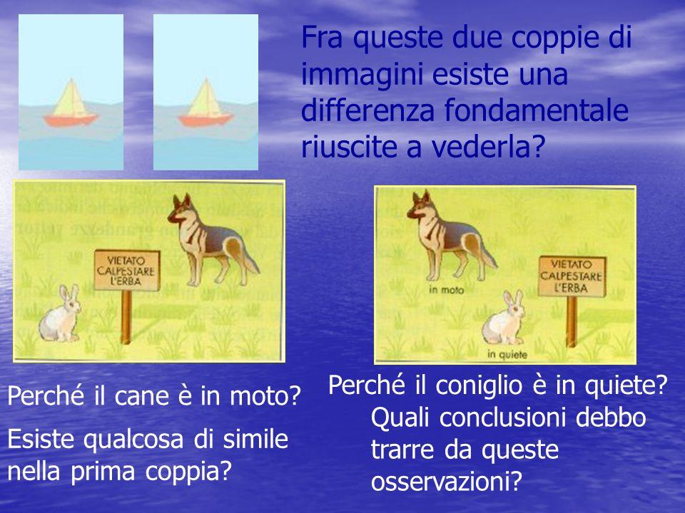 Quello che mi serve per stabilire se un corpo è in quiete o è in movimento è qualcosa che io considero fermo Consideriamo fermo il cane fermo Come dobbiamo considerare il coniglio e il cartello.