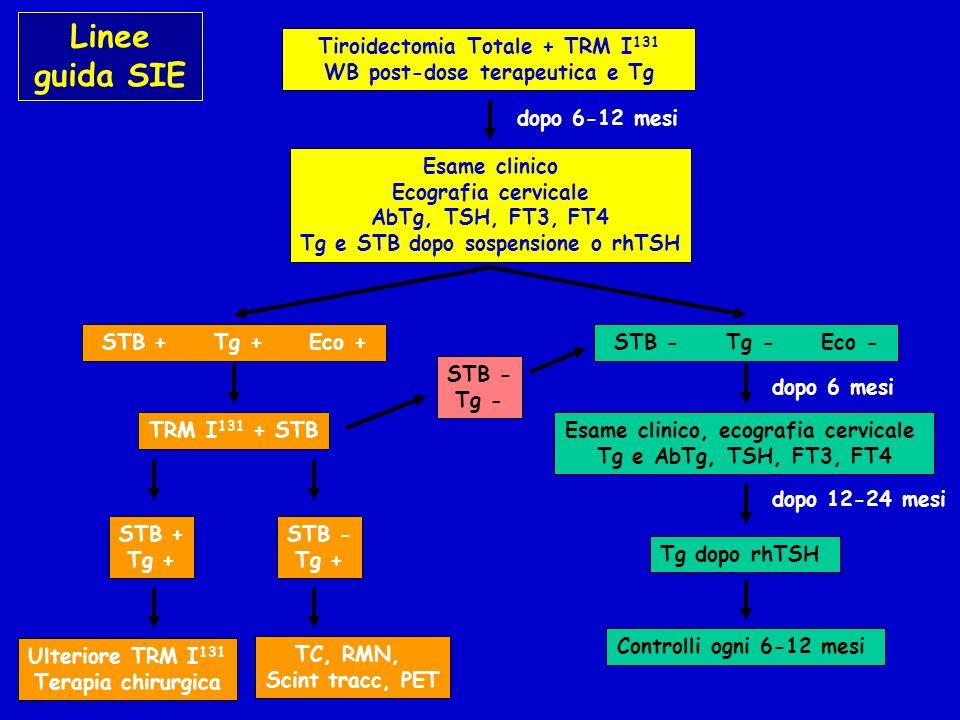 Tiroidectomia Totale + TRM I 131 WB post-dose terapeutica e Tg Esame clinico Ecografia cervicale AbTg, TSH, FT3, FT4 Tg e STB dopo sospensione o rhTSH STB + Tg + Eco + dopo 6-12 mesi TRM I 131 + STB STB + Tg + Ulteriore TRM I 131 Terapia chirurgica STB - Tg + TC, RMN, Scint tracc, PET STB - Tg - Eco - Esame clinico, ecografia cervicale Tg e AbTg, TSH, FT3, FT4 dopo 6 mesi dopo 12-24 mesi Tg dopo rhTSH Controlli ogni 6-12 mesi STB - Tg - Linee guida SIE