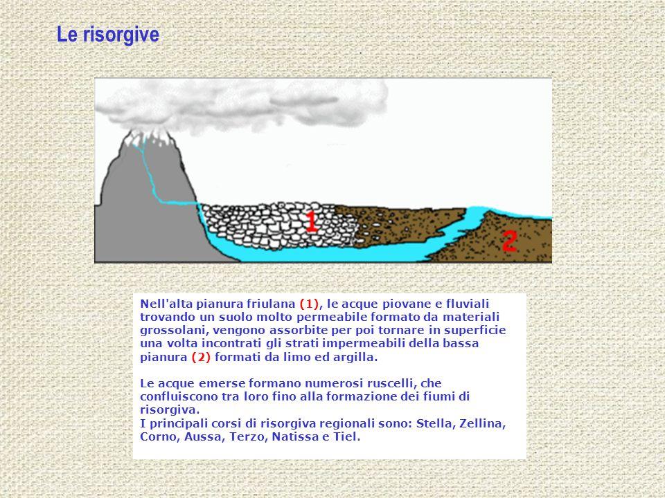 Nell'alta pianura friulana (1), le acque piovane e fluviali trovando un suolo molto permeabile formato da materiali grossolani, vengono assorbite per