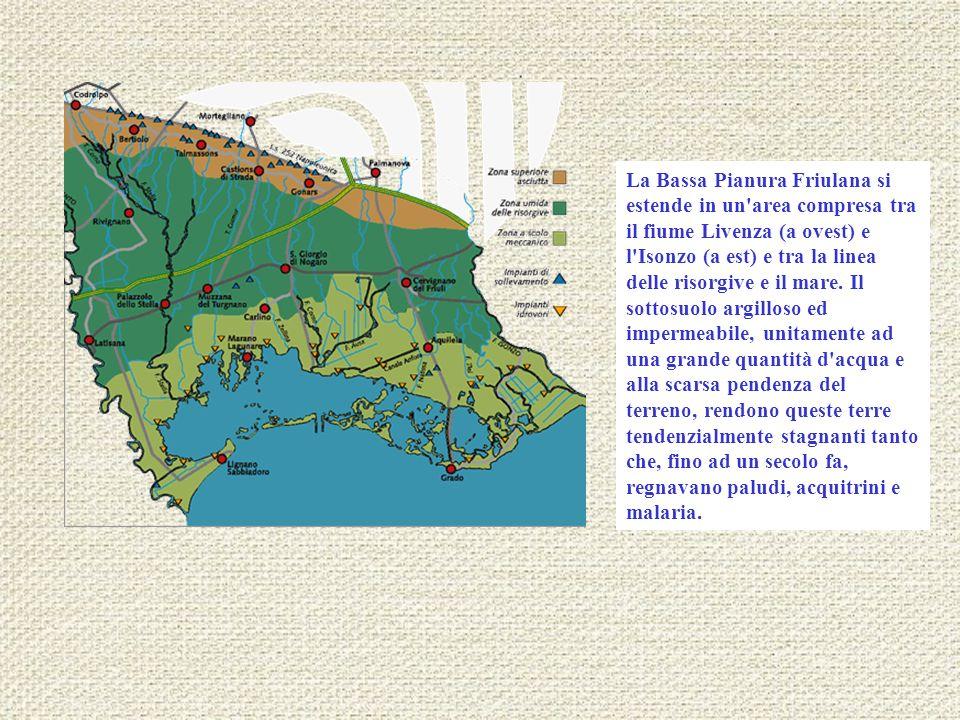 La Bassa Pianura Friulana si estende in un'area compresa tra il fiume Livenza (a ovest) e l'Isonzo (a est) e tra la linea delle risorgive e il mare. I