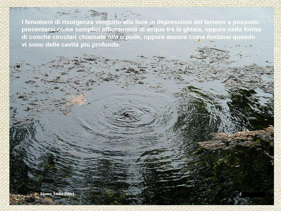 Fiume Stella (Olle) I fenomeni di risorgenza vengono alla luce in depressioni del terreno e possono presentarsi come semplici affioramenti di acqua tr