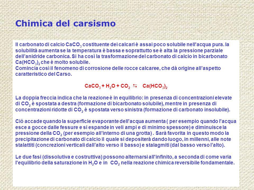 Chimica del carsismo Il carbonato di calcio CaCO 3 costituente dei calcari è assai poco solubile nell'acqua pura. la solubilità aumenta se la temperat