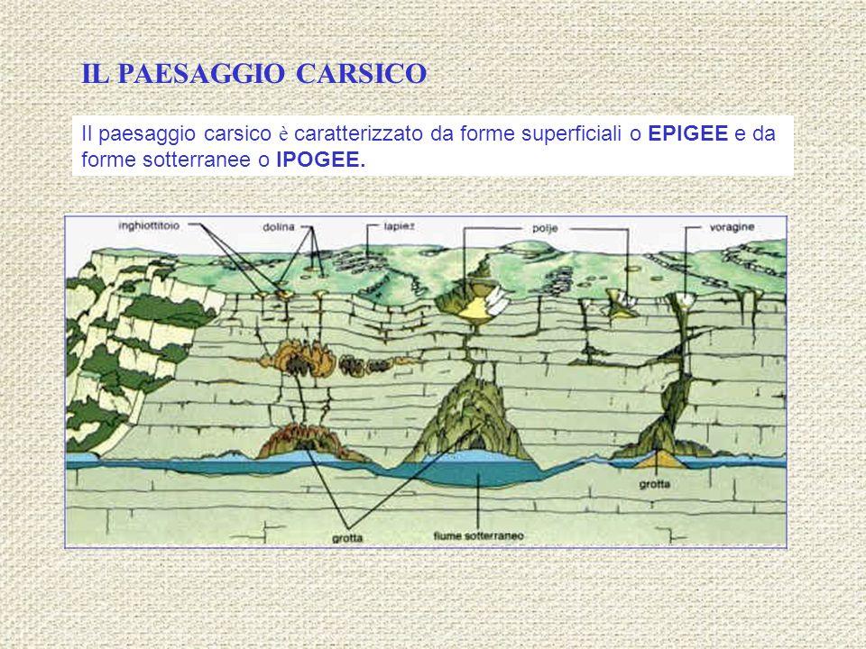 Il paesaggio carsico è caratterizzato da forme superficiali o EPIGEE e da forme sotterranee o IPOGEE. IL PAESAGGIO CARSICO