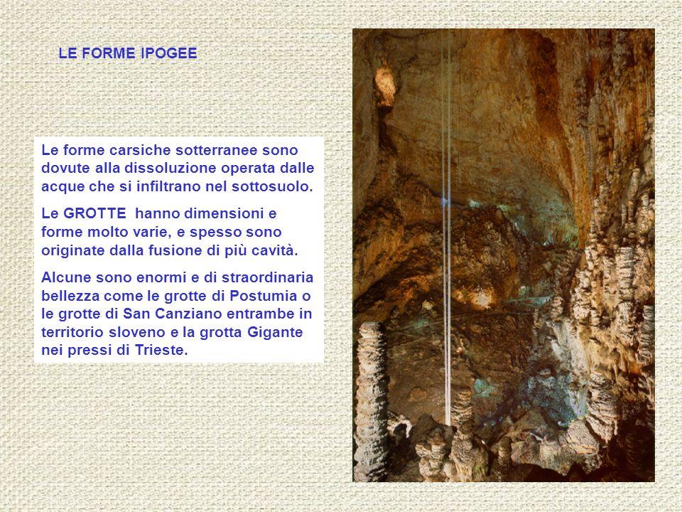 Le forme carsiche sotterranee sono dovute alla dissoluzione operata dalle acque che si infiltrano nel sottosuolo. Le GROTTE hanno dimensioni e forme m