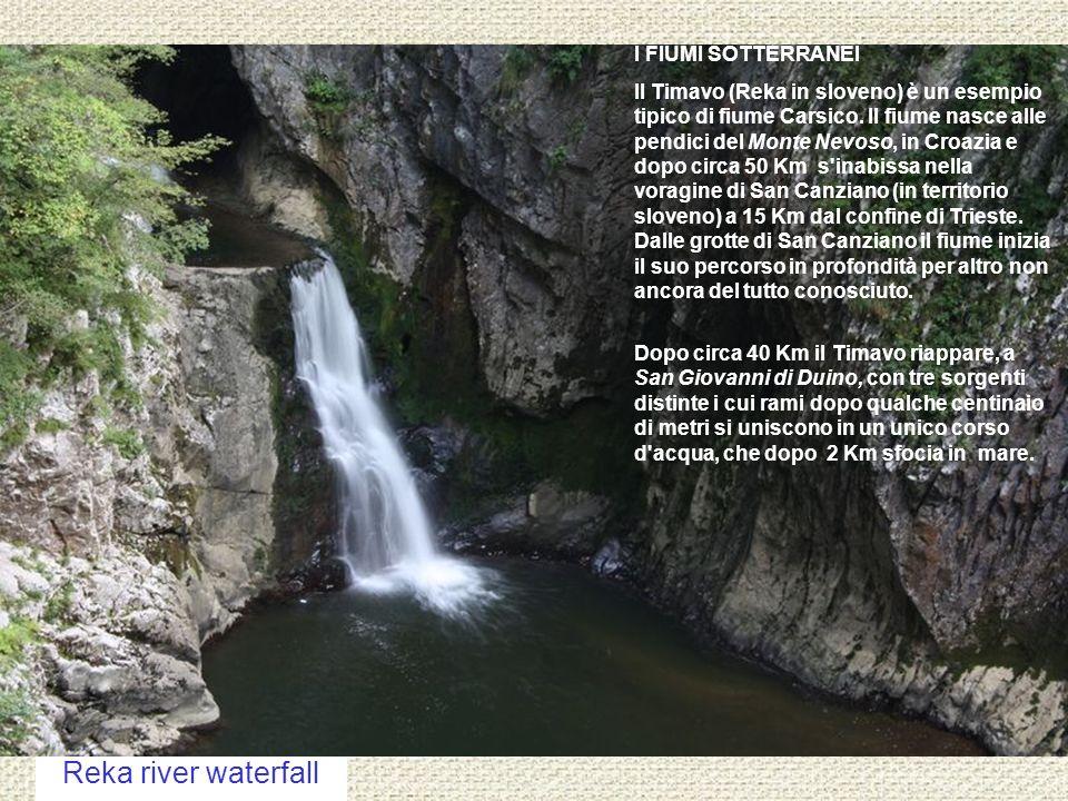 Reka river waterfall I FIUMI SOTTERRANEI Il Timavo (Reka in sloveno) è un esempio tipico di fiume Carsico. Il fiume nasce alle pendici del Monte Nevos