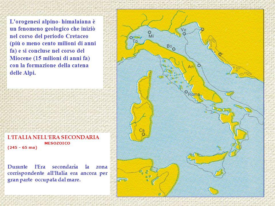 L'ITALIA NELL'ERA SECONDARIA MESOZOICO (245 - 65 ma) Durante l'Era secondaria la zona corrispondente all'Italia era ancora per gran parte occupata dal