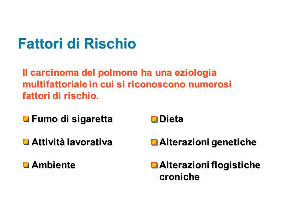 Il carcinoma del polmone ha una eziologia multifattoriale in cui si riconoscono numerosi fattori di rischio. Fumo di sigaretta Dieta Attività lavorati