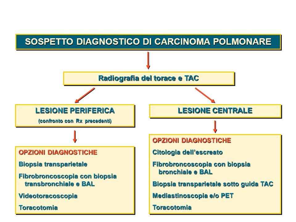 SOSPETTO DIAGNOSTICO DI CARCINOMA POLMONARE Radiografia del torace e TAC LESIONE PERIFERICA (confronto con Rx precedenti) LESIONE PERIFERICA (confront