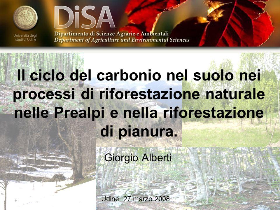 Il ciclo del carbonio nel suolo nei processi di riforestazione naturale nelle Prealpi e nella riforestazione di pianura. Giorgio Alberti Udine, 27 mar
