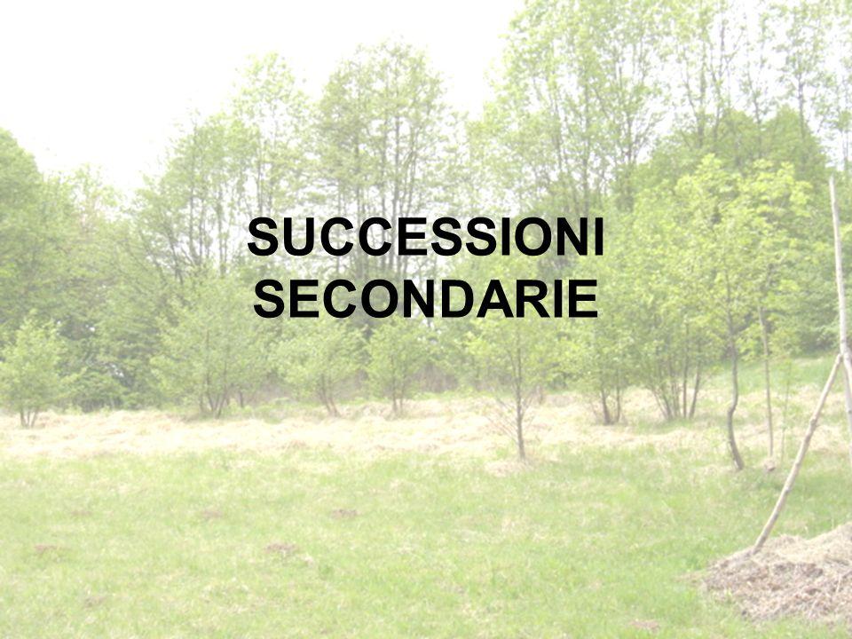 SUCCESSIONI SECONDARIE