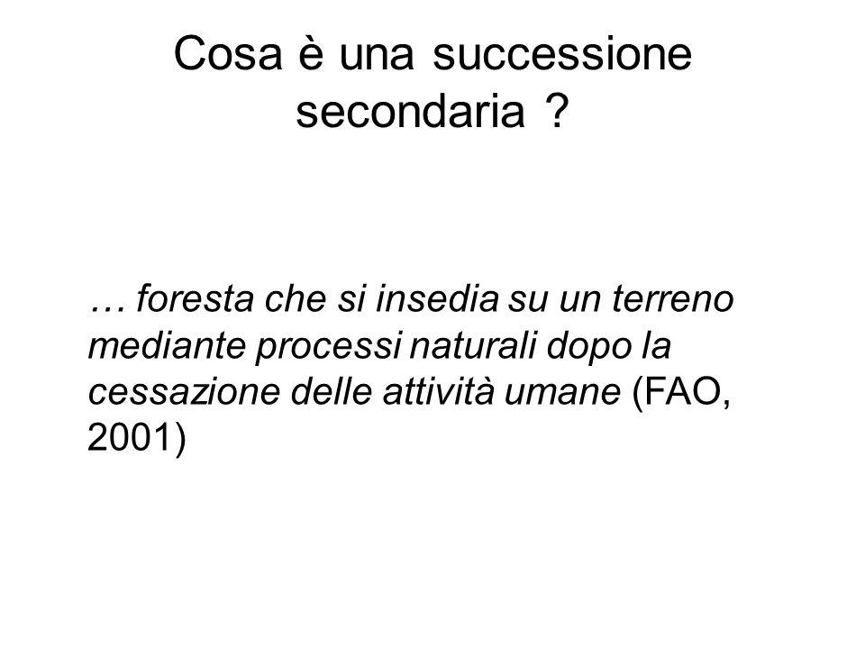 Cosa è una successione secondaria ? … foresta che si insedia su un terreno mediante processi naturali dopo la cessazione delle attività umane (FAO, 20