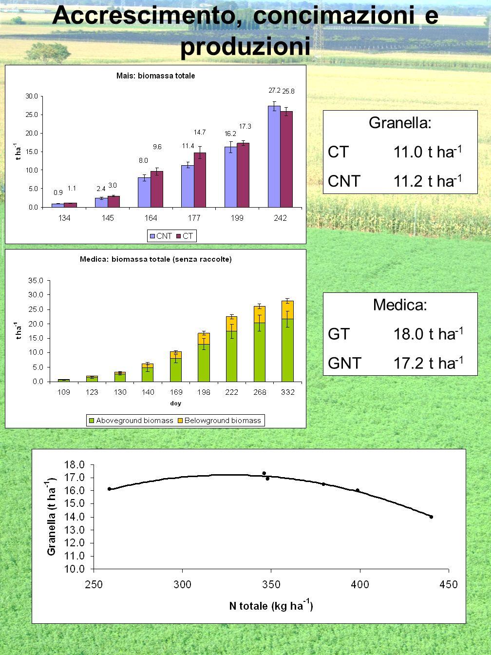 Accrescimento, concimazioni e produzioni Granella: CT11.0 t ha -1 CNT11.2 t ha -1 Medica: GT18.0 t ha -1 GNT17.2 t ha -1