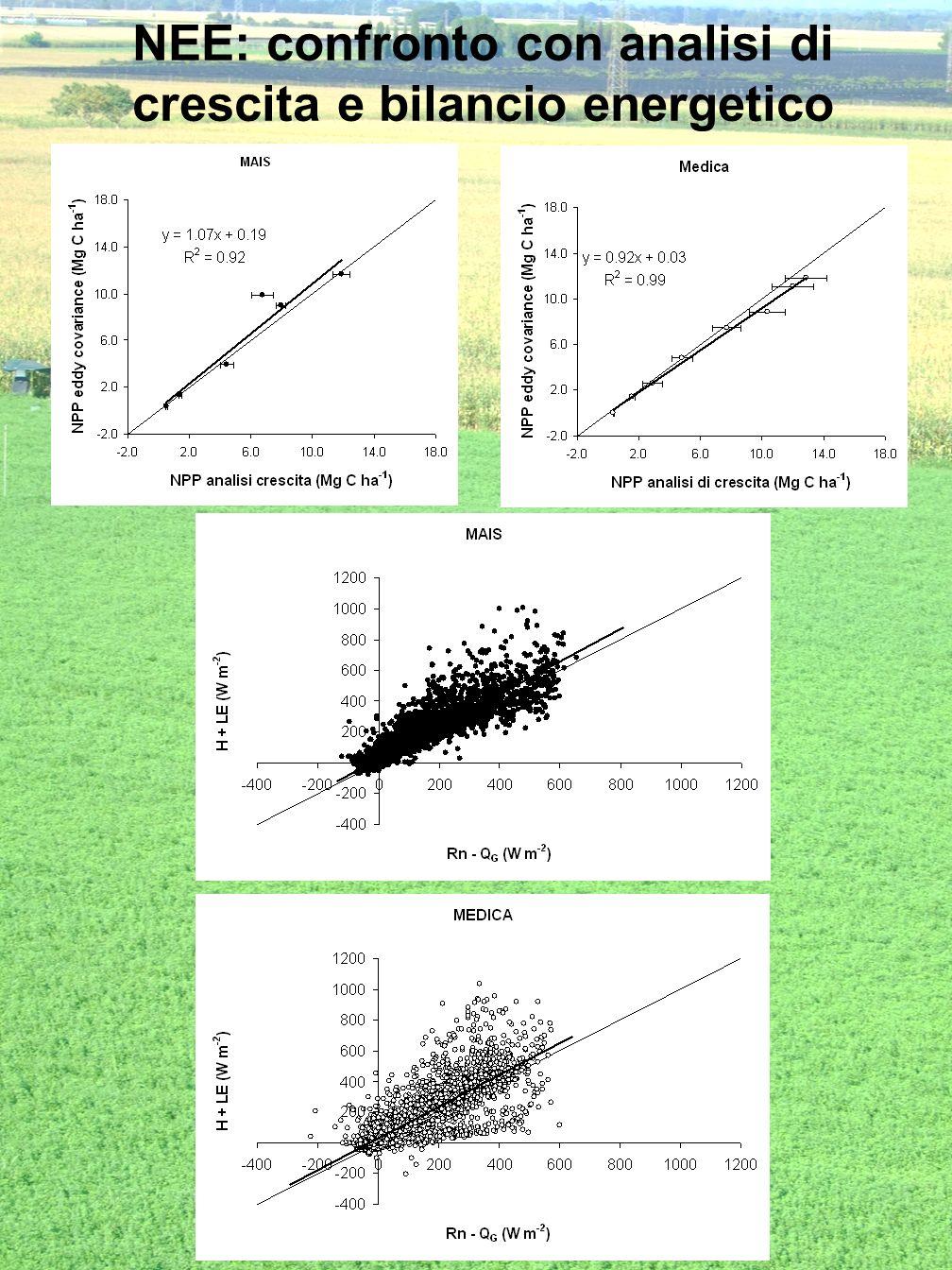 NEE: confronto con analisi di crescita e bilancio energetico