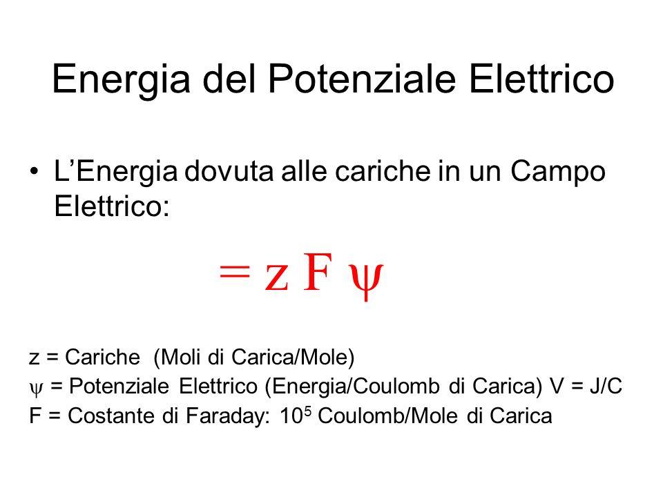 Energia del Potenziale Elettrico LEnergia dovuta alle cariche in un Campo Elettrico: = z F z = Cariche (Moli di Carica/Mole) = Potenziale Elettrico (E