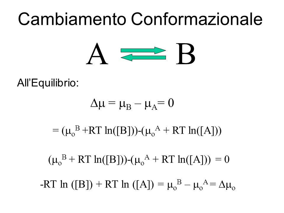 Cambiamento Conformazionale AB = ( o B +RT ln([B]))-( o A + RT ln([A])) = B – A = 0 AllEquilibrio: ( o B + RT ln([B]))-( o A + RT ln([A])) = 0 -RT ln