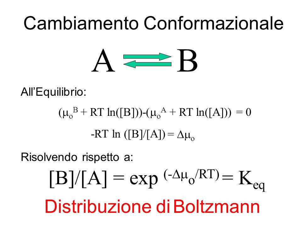 -RT ln ([B]) + RT ln ([A]) Distribuzione di Boltzmann AB ( o B + RT ln([B]))-( o A + RT ln([A])) = 0 -RT ln ([B]/[A]) = o [B]/[A]= K eq AllEquilibrio: