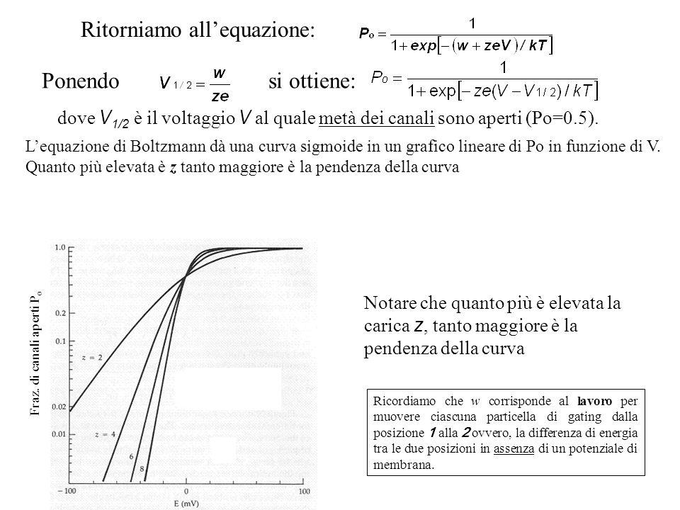 Fraz. di canali aperti P o Ponendo si ottiene: dove V 1/2 è il voltaggio V al quale metà dei canali sono aperti (Po=0.5). Notare che quanto più è elev