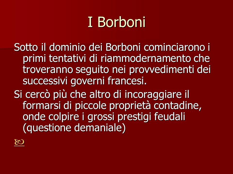 I Borboni Sotto il dominio dei Borboni cominciarono i primi tentativi di riammodernamento che troveranno seguito nei provvedimenti dei successivi gove