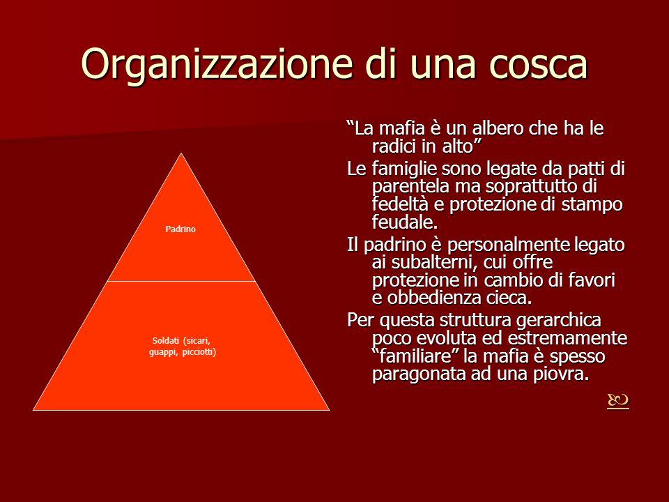 Organizzazione di una cosca La mafia è un albero che ha le radici in alto Le famiglie sono legate da patti di parentela ma soprattutto di fedeltà e pr