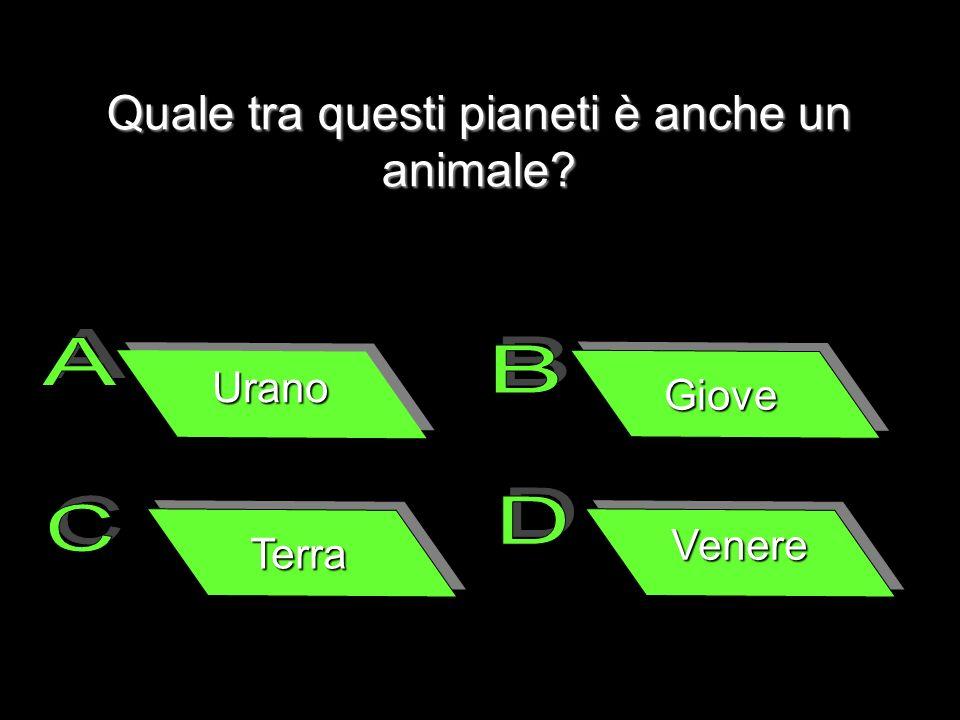 Quale tra questi pianeti è anche un animale? Urano Giove Terra Venere