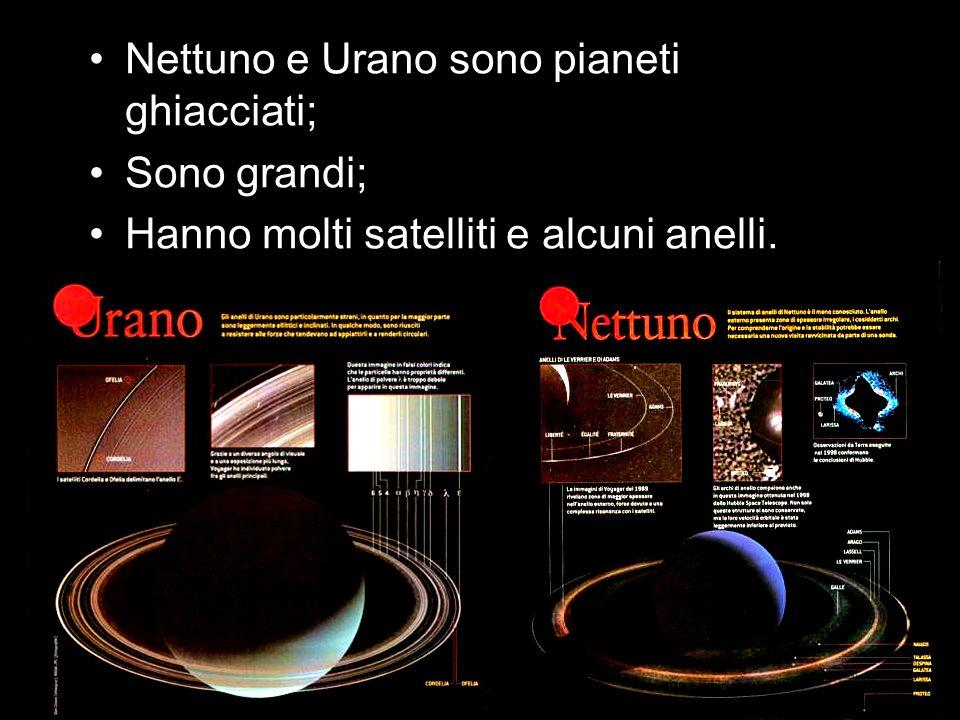 Nettuno e Urano sono pianeti ghiacciati; Sono grandi; Hanno molti satelliti e alcuni anelli.