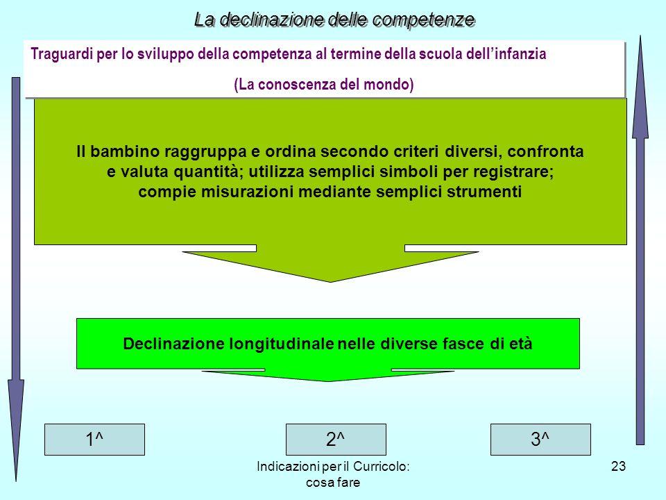 Indicazioni per il Curricolo: cosa fare 23 Il bambino raggruppa e ordina secondo criteri diversi, confronta e valuta quantità; utilizza semplici simbo