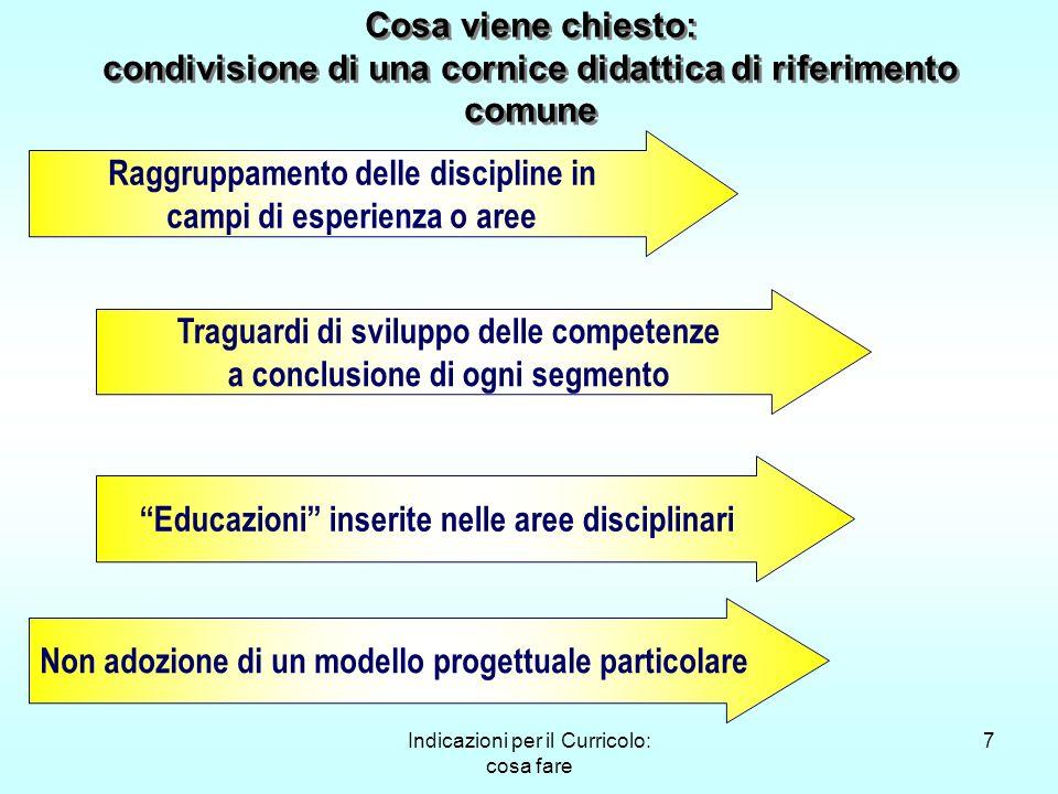 Indicazioni per il Curricolo: cosa fare 7 Raggruppamento delle discipline in campi di esperienza o aree Traguardi di sviluppo delle competenze a concl